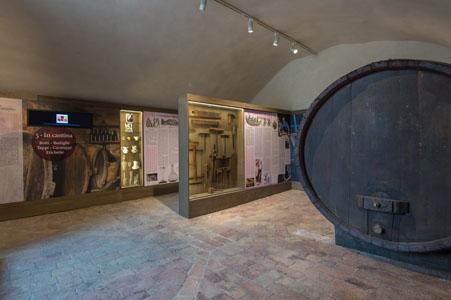 Cantina Musei del Cibo sala delle botti