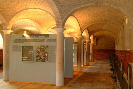 archivio parchi taro interno del centro visita a Giarola