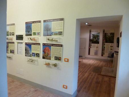 museo boschi